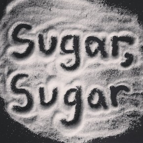 Sugar, Sugar exhibition